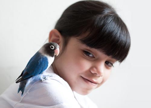 Hey little buddy! Child Girl Infancy Head 1 Human being 3 - 8 years Animal Pet Bird Parrots Parakeet Budgerigar Beak Feather Friendliness Happiness Beautiful