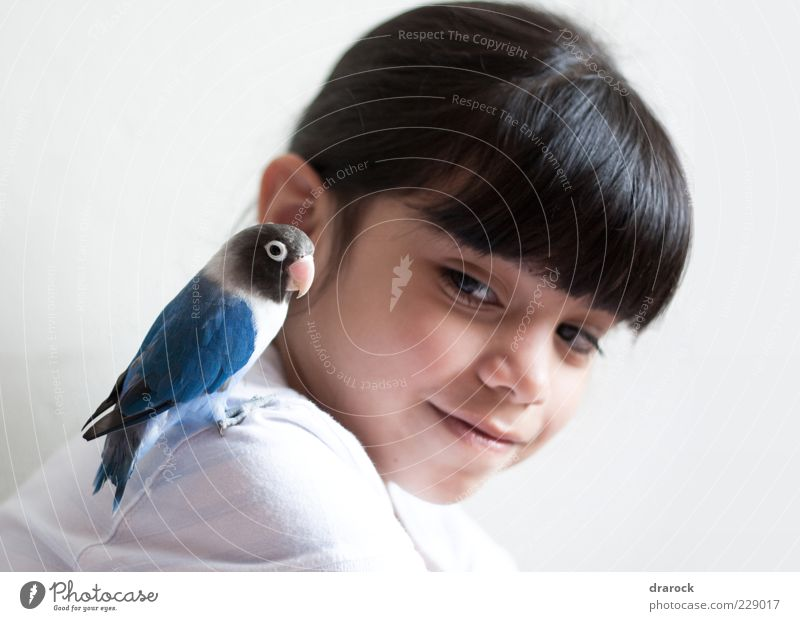 Hey little buddy! Human being Child Youth (Young adults) Blue Beautiful Girl Joy Animal Black Head Friendship Bird Infancy Together Pink Sit