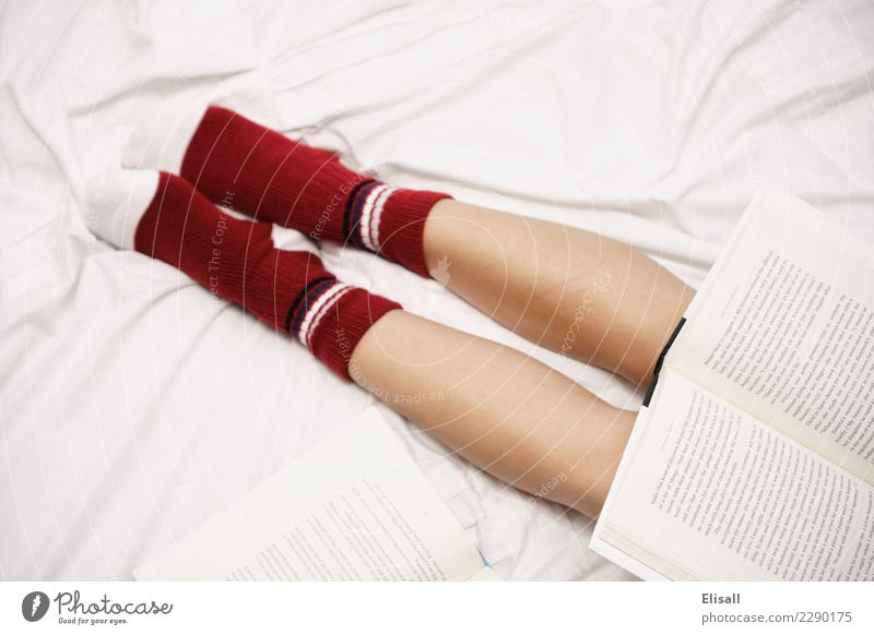 Cozy Lifestyle Leisure and hobbies Reading Bed Study Home Relaxation Book Sheet Sock Red Warmth Student Legs Comfortable Safety (feeling of) Colour photo