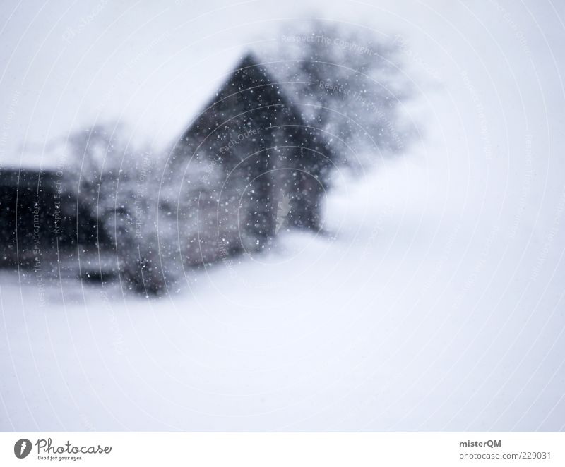 White Tree Winter Cold Snow Snowfall Esthetic Bushes Romance Storm Hut Blur Austria Snowscape Snowflake Hazy
