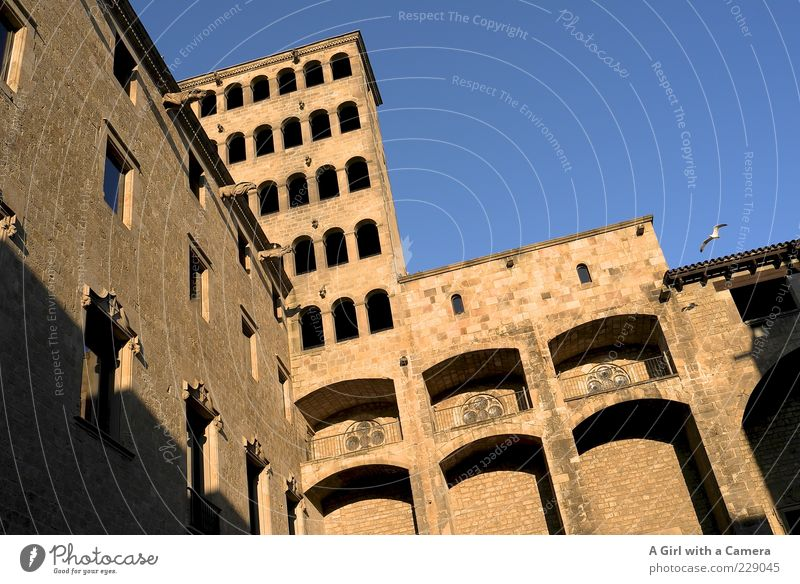 Barri Gothic Barcelona Catalonia Spain Old town Manmade structures Building Architecture Wall (barrier) Wall (building) Facade Window Tourist Attraction