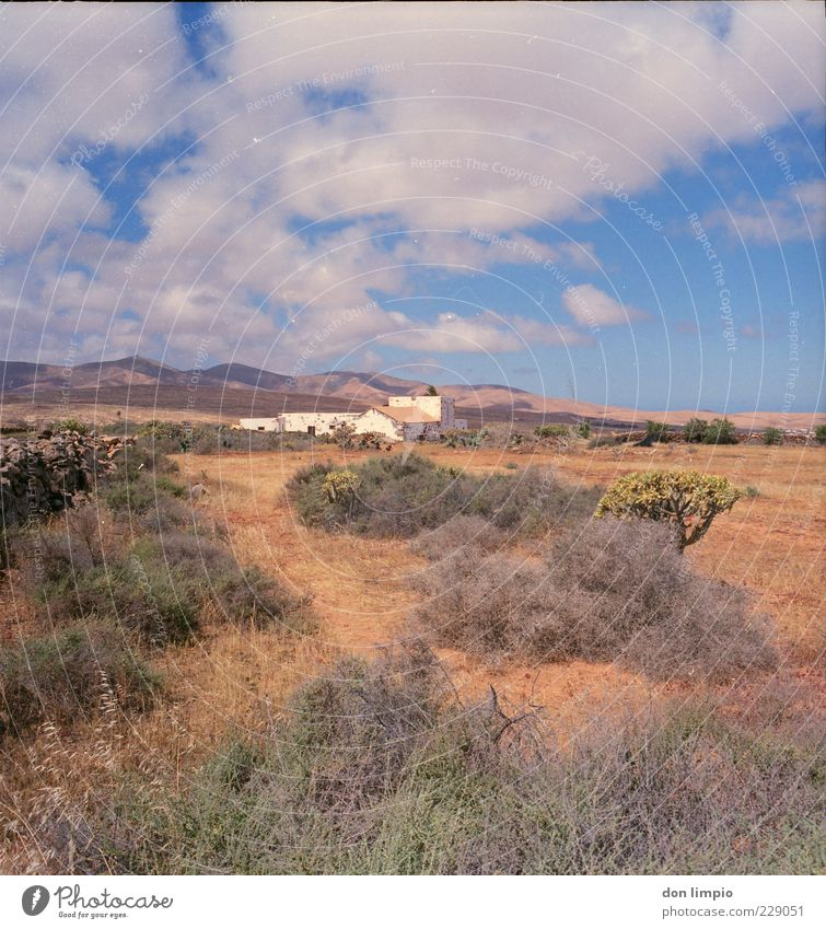 en el campo Vacation & Travel House (Residential Structure) Landscape Summer Beautiful weather Mountain Island Fuerteventura Village Populated Deserted