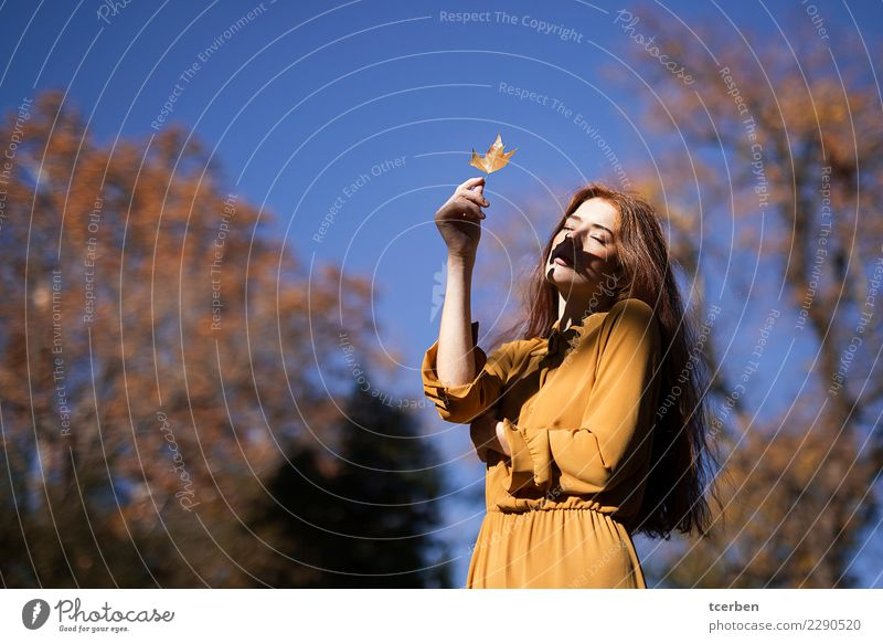 Portrait of redhead woman putting shadow of a leaf on her face Human being Sky Youth (Young adults) Young woman Blue Beautiful Sun Tree 18 - 30 years Adults