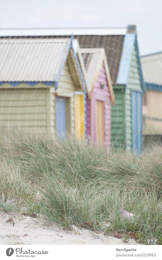 Vacation & Travel Summer Beach Grass Sand Tourism Dune Hut Summer vacation Beach hut