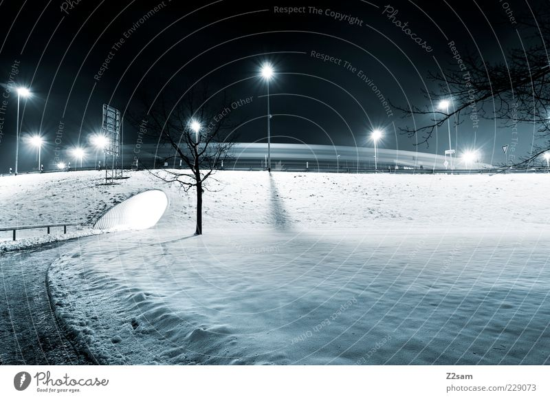 Tree Loneliness Winter Calm Landscape Environment Dark Street Cold Lanes & trails Park Ice Esthetic Frost Simple Lantern