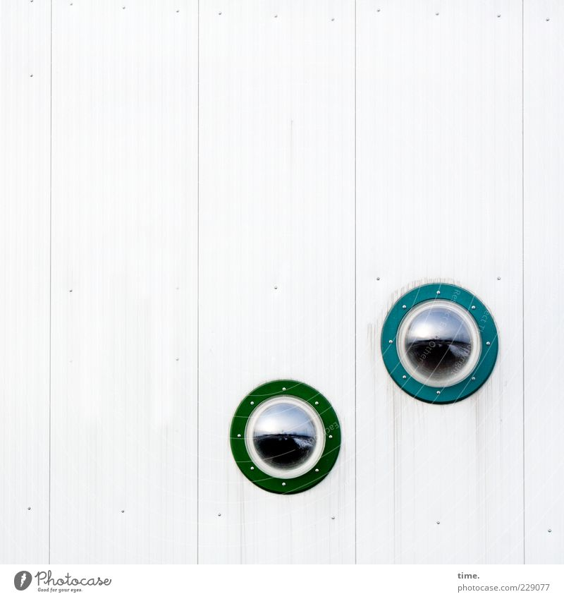 Watching Flatfish Watching Wall (barrier) Wall (building) Window Glass Observe Esthetic Bright Round Green White Safety Expectation Testing & Control