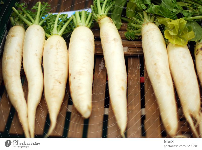 radishes Food Vegetable Nutrition Organic produce Vegetarian diet Long Delicious Radish Root vegetable Farmer's market Vegetable market