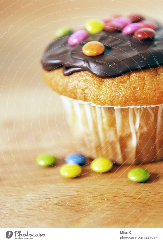 muffin Food Cake Candy Chocolate Nutrition Fragrance Small Delicious Sweet Muffin Chocolate buttons Chocolate coating Fat Unhealthy Food photograph Colour photo