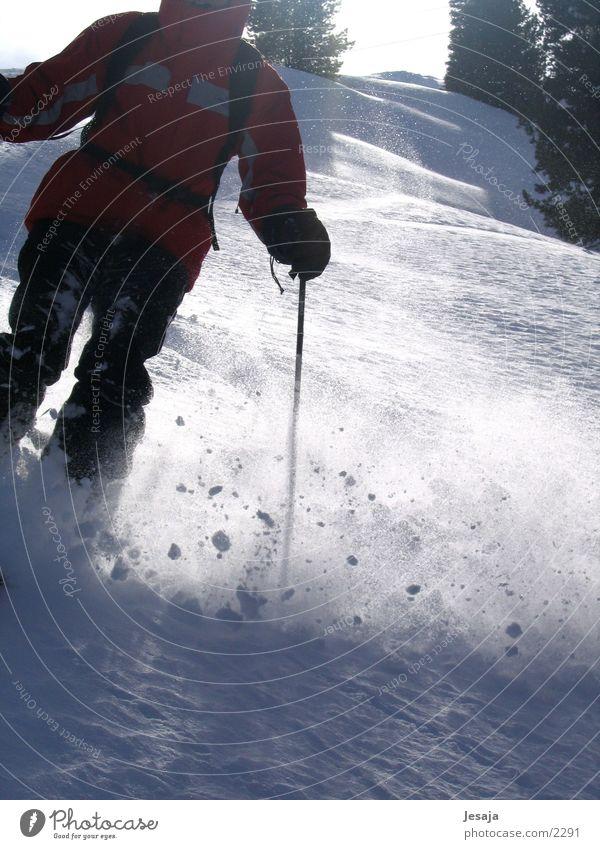 Sports Skiing Dynamics Skier Winter vacation Ski run Deep snow Ski-run Pow Wow