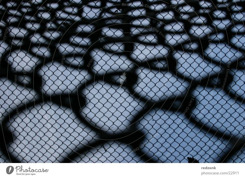 Sky Blue Black Freedom Perspective Net Things Fence Escape Barrier Penitentiary Grating Fold Wire netting