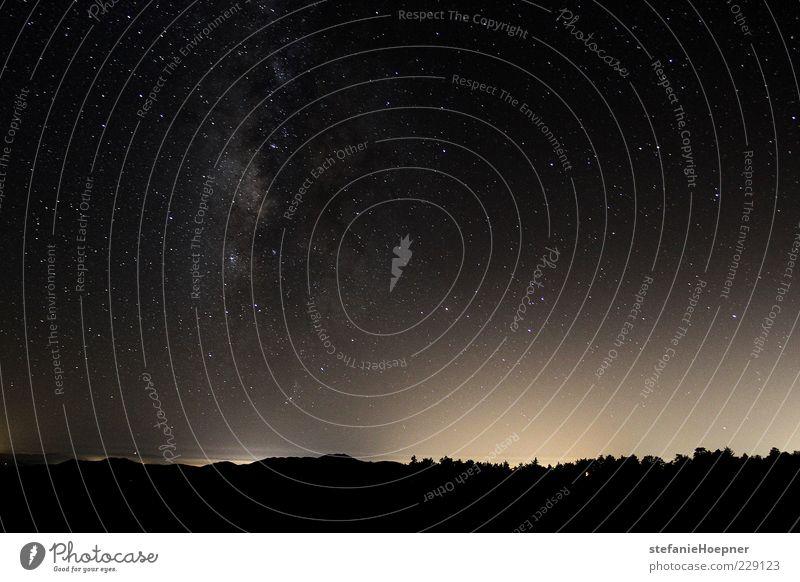 Sky Far-off places Horizon Glittering Stars Illuminate Observe Infinity Universe Copy Space Night sky Cloudless sky Galaxy Starry sky Milky way