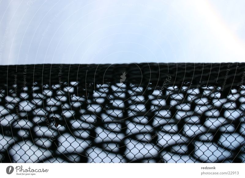 Freedom fence I Fence Grating Wire netting Fold Barrier Black Things Looking Sky Net Penitentiary Blue Perspective