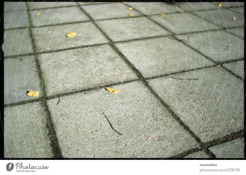 hard square Environment Climate Deserted Places Sidewalk Paving tiles Sign Lie Sharp-edged Cliche Trashy Gloomy Design Whimsical Surrealism Symmetry Hard