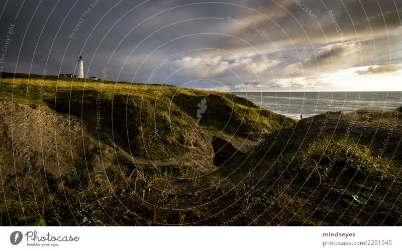 lighthouse Beach Nature Landscape Earth Water Sky Clouds Grass Coast North Sea Dune Lighthouse Going Infinity Maritime Blue Gold Green Wanderlust Loneliness