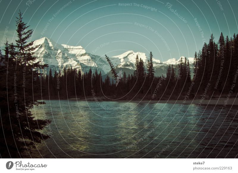 Canadian Sunset Landscape Cloudless sky Forest Mountain Snowcapped peak River bank Rocky Mountains Canada Gigantic Clean Blue Black Relaxation Idyll Calm