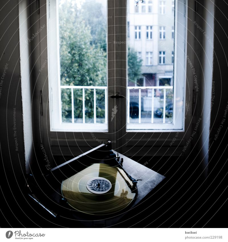 Tree Joy Window Music Room Flat (apartment) Facade Lifestyle Living or residing Round Rotate Record Entertainment Old building View from a window Record player