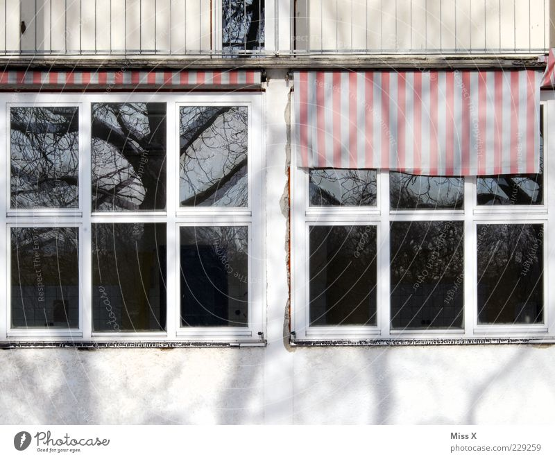 Old Tree House (Residential Structure) Window Building Facade Car Window Striped Window pane Uninhabited Weather protection Venetian blinds Window transom and mullion Cloth pattern
