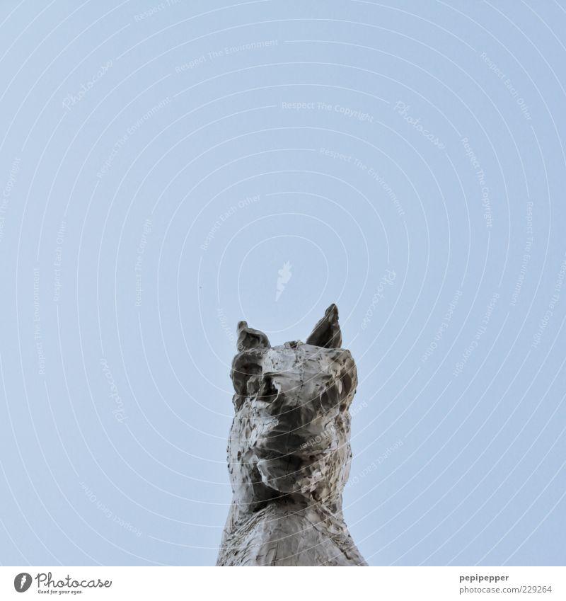 Blue Animal Metal Art Horse Statue Sculpture Tourist Attraction Blue sky Work of art Cloudless sky Horse's head