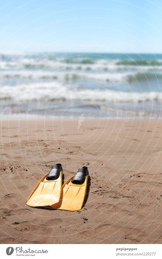 a diver who doesn't dive, doesn't dive. Leisure and hobbies Summer Summer vacation Sun Beach Ocean Aquatics Sand Water Horizon Waves Multicoloured Exterior shot