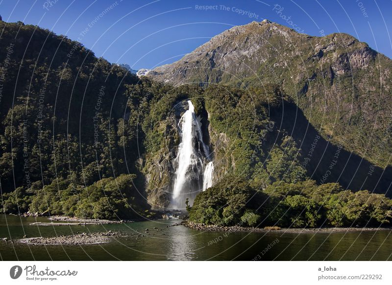 piopiotahi Nature Landscape Elements Water Cloudless sky Plant Rock Mountain Coast Fjord Waterfall Exceptional Famousness Wanderlust Fiordland National Park
