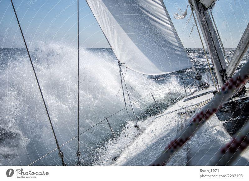 Vacation & Travel Water Freedom Waves Power Wind Joie de vivre (Vitality) Adventure Drops of water Baltic Sea Sailing Maritime Resolve Sailboat Aquatics