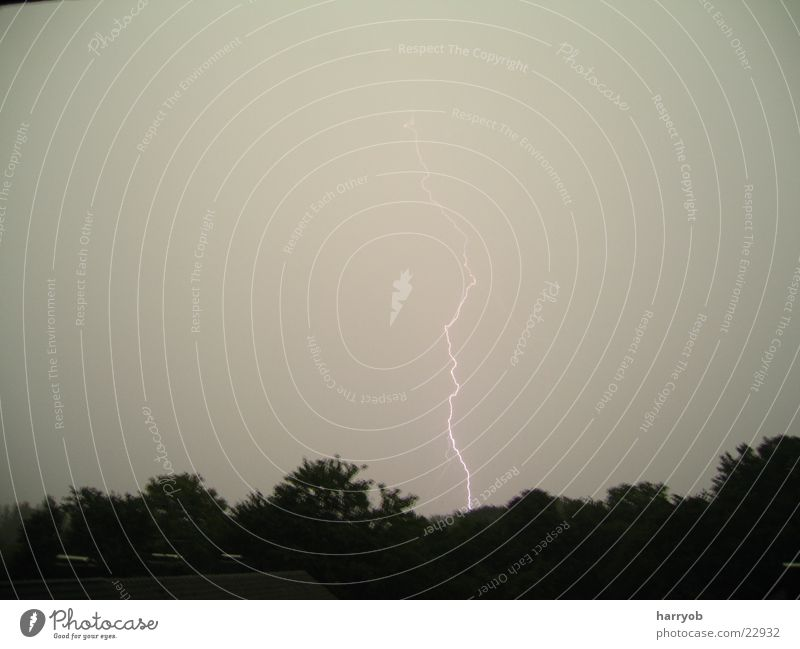 Tree Clouds Dark Lightning Storm