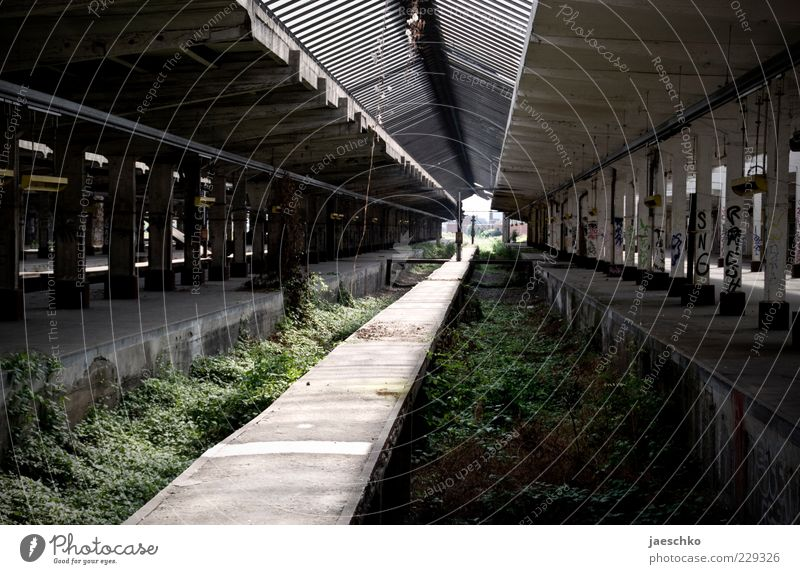Old Plant Line Perspective Change Transience Symbols and metaphors Logistics Derelict Railroad tracks Past Decline Shabby Depth of field Fear of the future