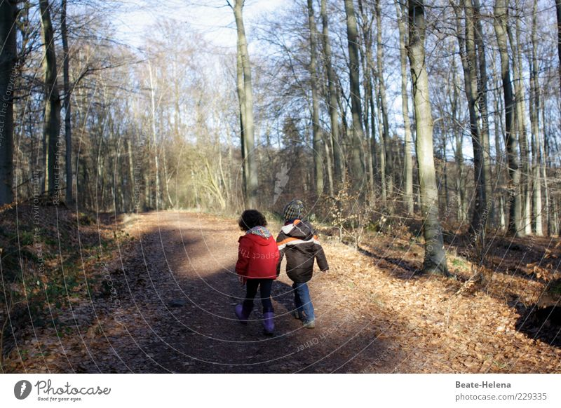 Child Red Girl Forest Emotions Boy (child) Happy Couple Friendship Brown Infancy Together Contentment Going Walking Happiness