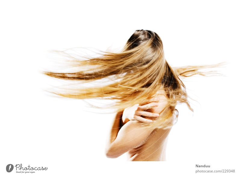 spinning top Human being Feminine Hair and hairstyles 1 Euphoria Dynamics Shake Blonde Long-haired Colour photo Studio shot Copy Space left Copy Space right