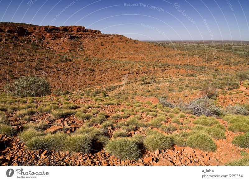 Sky Nature Plant Vacation & Travel Far-off places Mountain Landscape Warmth Earth Rock Natural Bushes Elements Travel photography Desert Peak