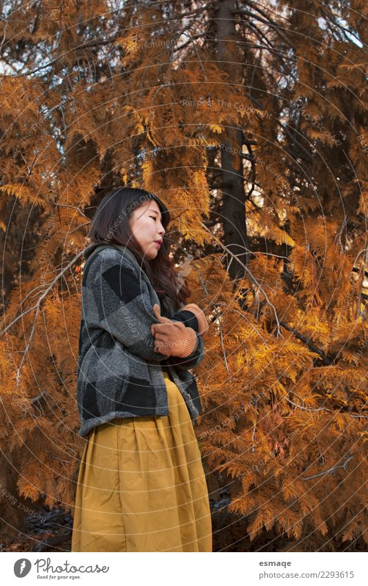 Woman in autumn nature Human being Nature Vacation & Travel Youth (Young adults) Tree Loneliness Calm 18 - 30 years Adults Lifestyle Healthy Autumn Cold Natural