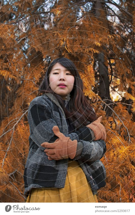 Asian Young Girls in autumn Human being Nature Vacation & Travel Youth (Young adults) Young woman Plant Beautiful Colour Loneliness Lifestyle Healthy Feminine