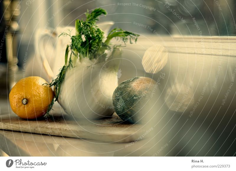 KitchenStill Vegetable Fruit Natural Transience Lemon Fennel Window board Spoiled Colour photo Interior shot Reflection Shallow depth of field Copy Space right