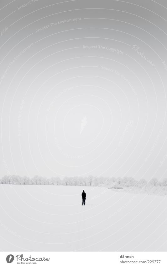 Human being Nature White Winter Loneliness Calm Far-off places Landscape Cold Snow Gray Sadness Horizon Weather Fear Large