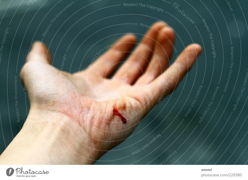 flesh wound Skin Hand Authentic Simple Gray Red Pain Blood Wound Fingers Palm of the hand Accident AIDS Colour photo Exterior shot Close-up Detail Day Blur