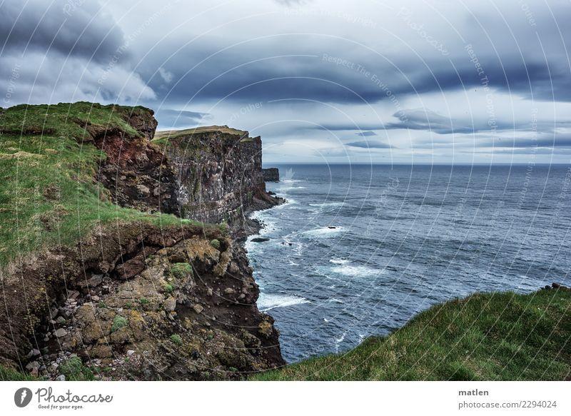 Sky Nature Plant Blue Green Landscape Ocean Animal Dark Spring Coast Grass Gray Brown Rock Horizon