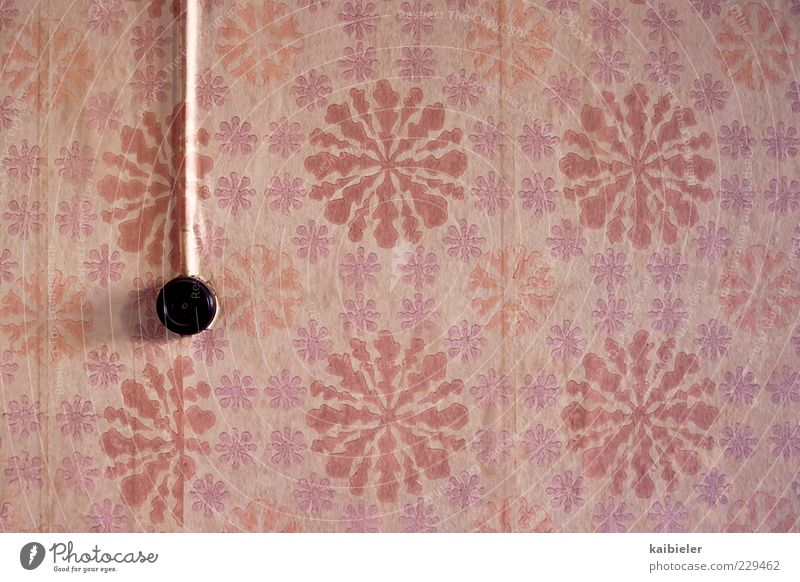 Old Red Colour Wall (building) Wall (barrier) Room Pink Flat (apartment) Design Esthetic Living or residing Retro Decoration Transience Kitsch Violet