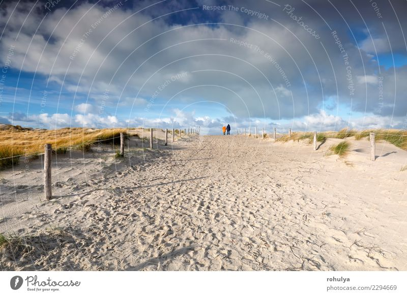 people walk on sand path and beautiful blue sky Beautiful Vacation & Travel Couple Nature Landscape Sand Sky Clouds Beautiful weather Coast Beach North Sea