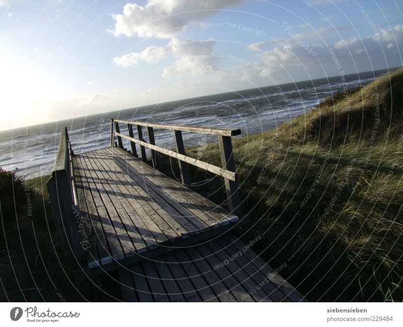 footbridge Beach Ocean Island Waves Environment Nature Landscape Water Sky Sunrise Sunset Autumn Beautiful weather Coast Lakeside Baltic Sea Sand Wood Moody