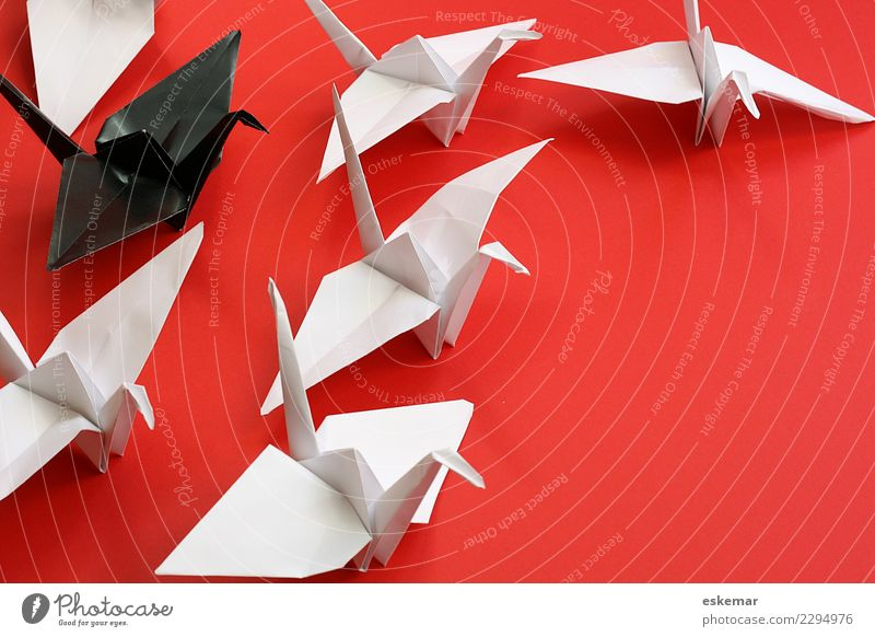 chief Leisure and hobbies Handicraft Origami crease Animal Bird Crane Group of animals Flock Paper Sign Together Near Above Many Red Black White Relationship