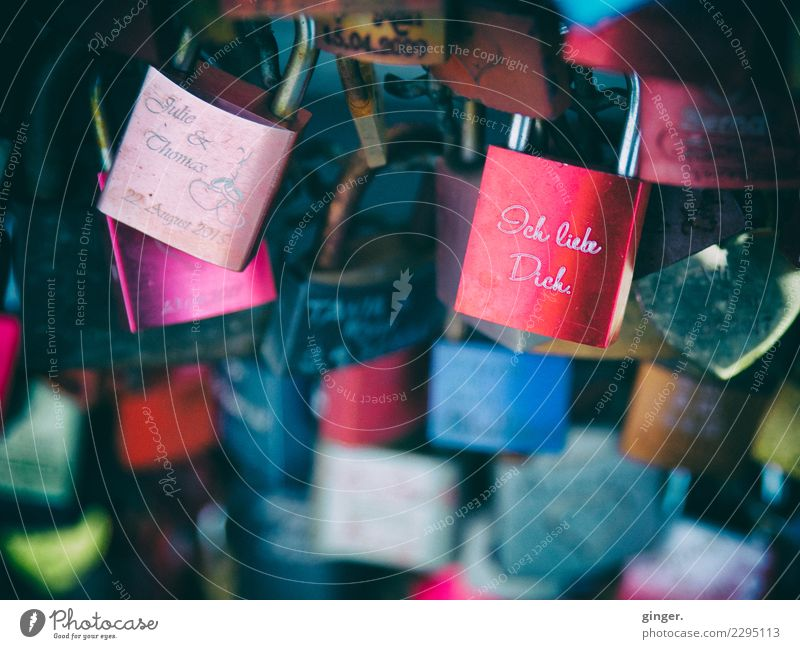 I love you too Lifestyle Blue Brown Multicoloured Green Violet Red Lock vowed to love Many Lovers Iconic Heartrending Connectedness Steel Closed Cologne Bridge