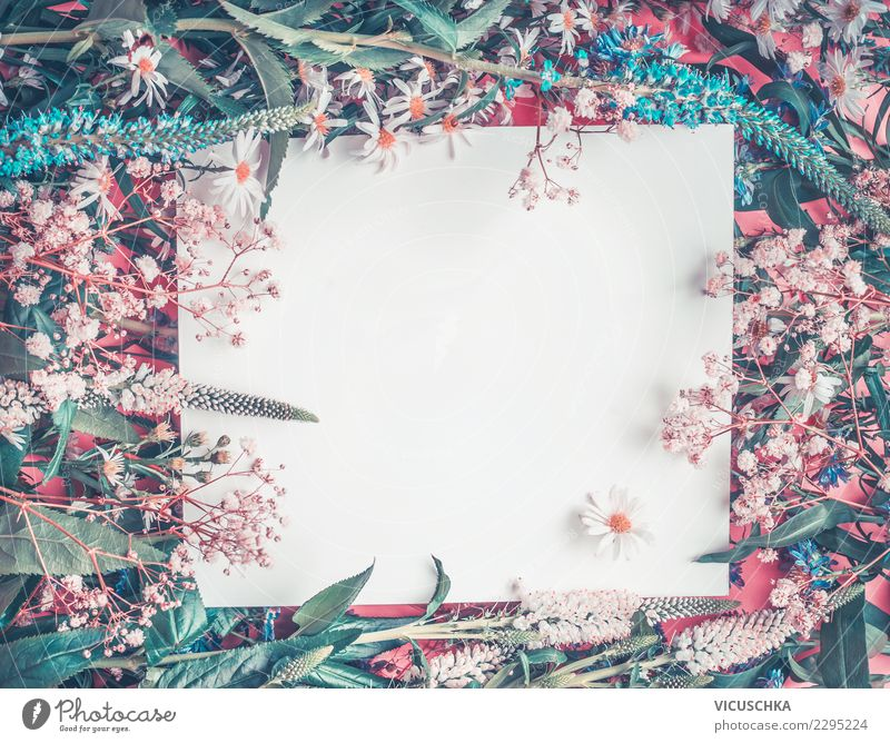 Nature Blue Summer White Flower Background picture Spring Style Feasts & Celebrations Pink Copy Space Design Decoration Birthday Wedding Card