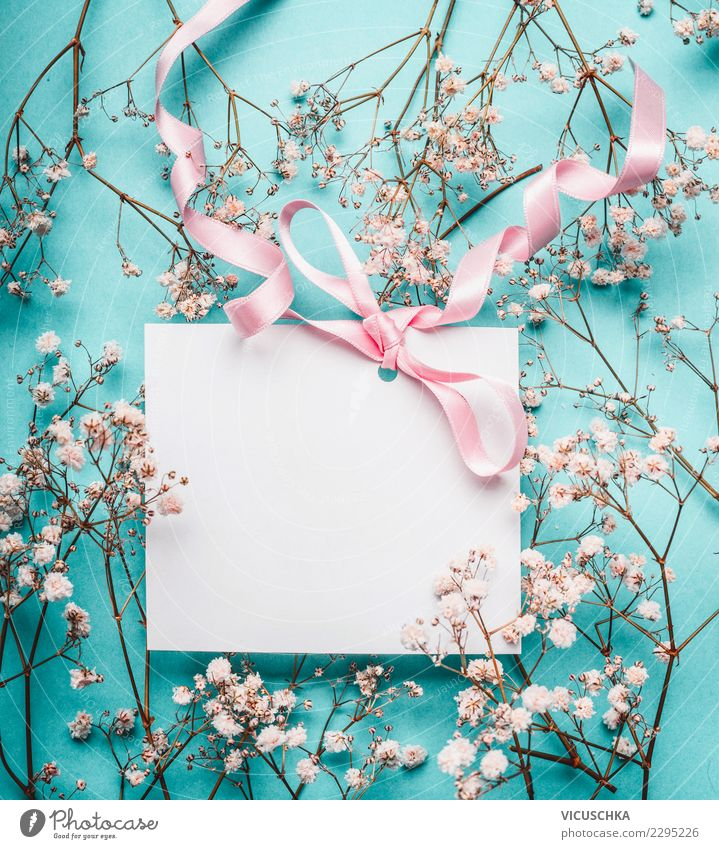 Blue White Flower Joy Blossom Background picture Love Style Feasts & Celebrations Pink Design Decoration Birthday Empty Sign Wedding