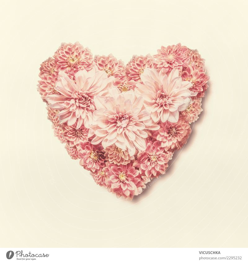 Flower Leaf Blossom Love Emotions Style Feasts & Celebrations Pink Design Decoration Birthday Creativity Heart Sign Wedding Bouquet