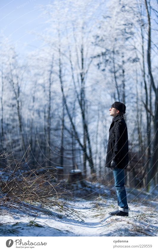 Human being Nature Youth (Young adults) Tree Sun Winter Loneliness Calm Adults Forest Relaxation Environment Landscape Life Cold Snow