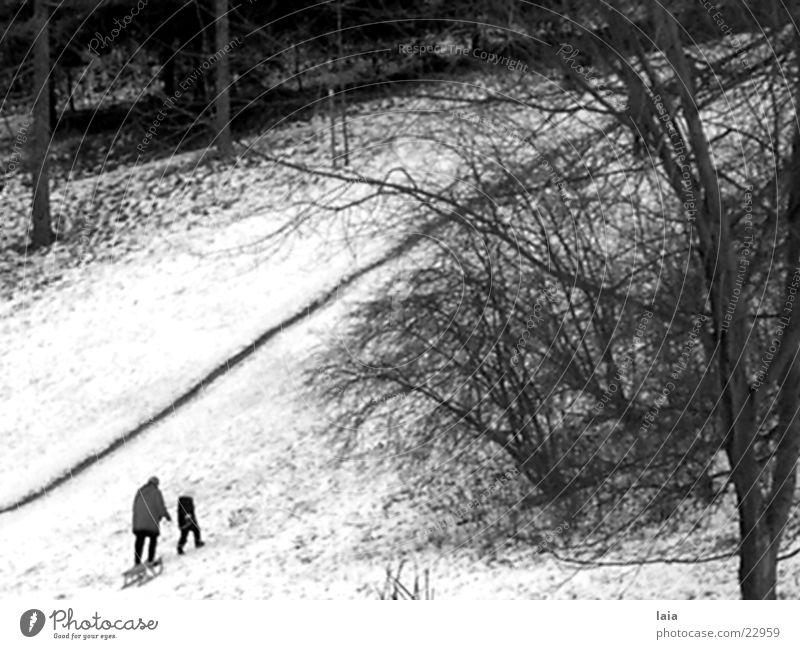 Winter Snow Mountain Lanes & trails Europe Nostalgia