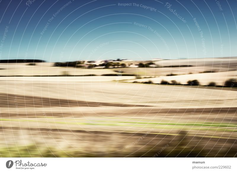 Sky Nature Summer Far-off places Landscape Horizon Field Modern Authentic Exceptional Beautiful weather Blue sky Grain field