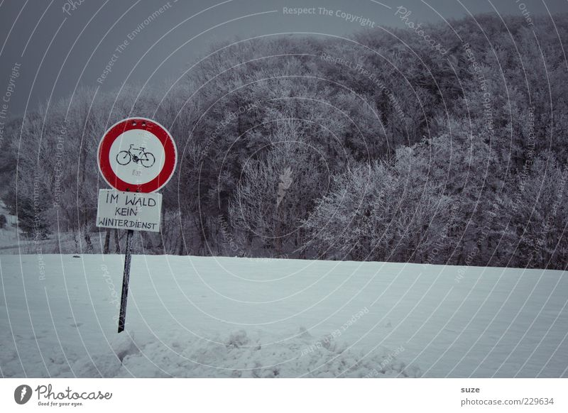 Like this Environment Nature Landscape Sky Cloudless sky Winter Snow Forest Signs and labeling Signage Warning sign Dark Cold Gray Bans Snow layer Cycle path