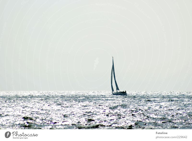 Starboard is Spiekerook ;-) Environment Nature Elements Water Sky Cloudless sky Waves North Sea Baltic Sea Ocean Boating trip Sailboat Sailing ship Watercraft