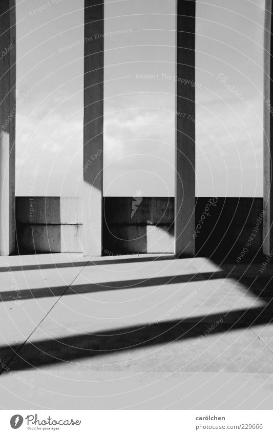 lines Wall (barrier) Wall (building) Gray Black White Column Shadow play Direct Elegant Simple Black & white photo Abstract Structures and shapes Deserted
